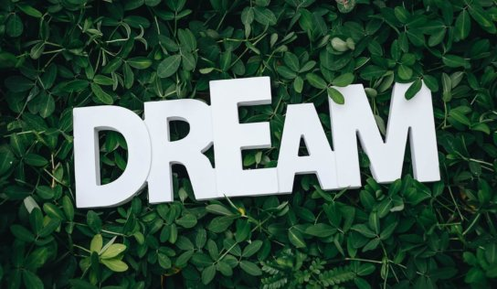 How to Manifest Your Dreams into Reality