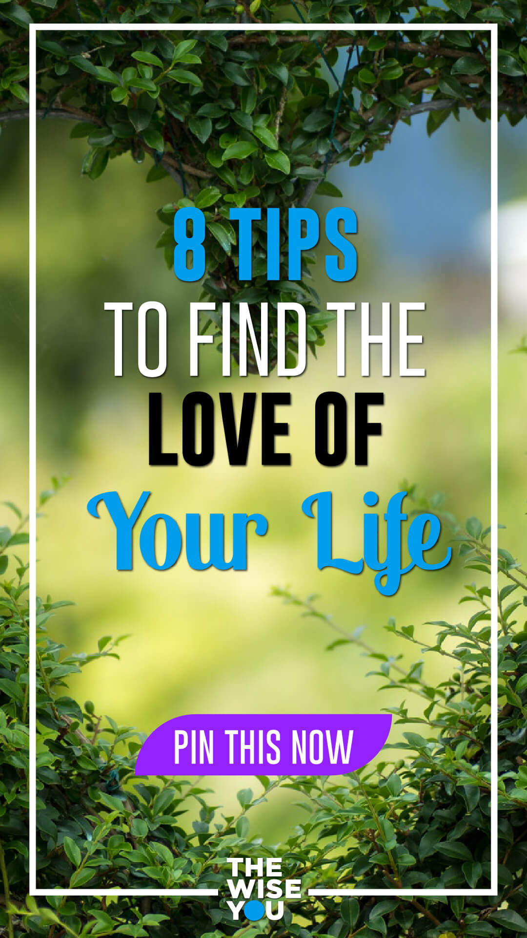 8 Tips to Find the Love of Your Life