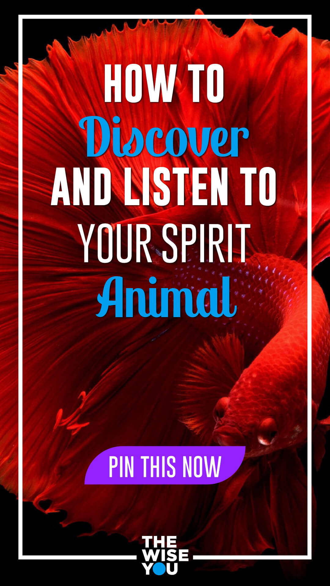 How to Discover and Listen to Your Spirit Animal